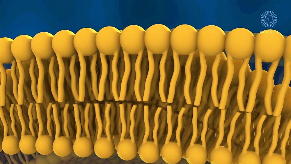 Nanotechnologia – jak przedostać się w głąb skóry?